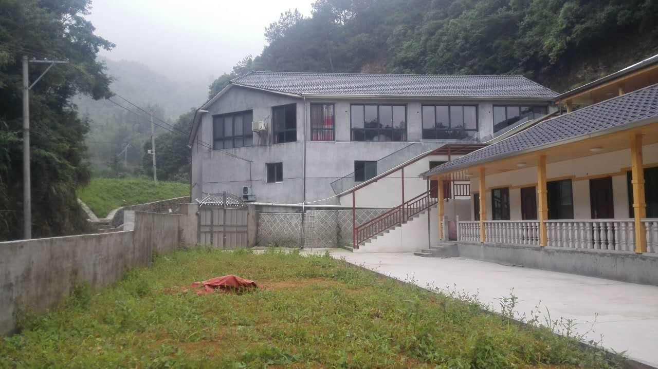 浙江杭州临安200多亩林山地 民宿出售